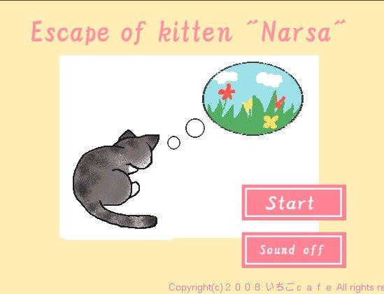 Escape of kitten Narsa